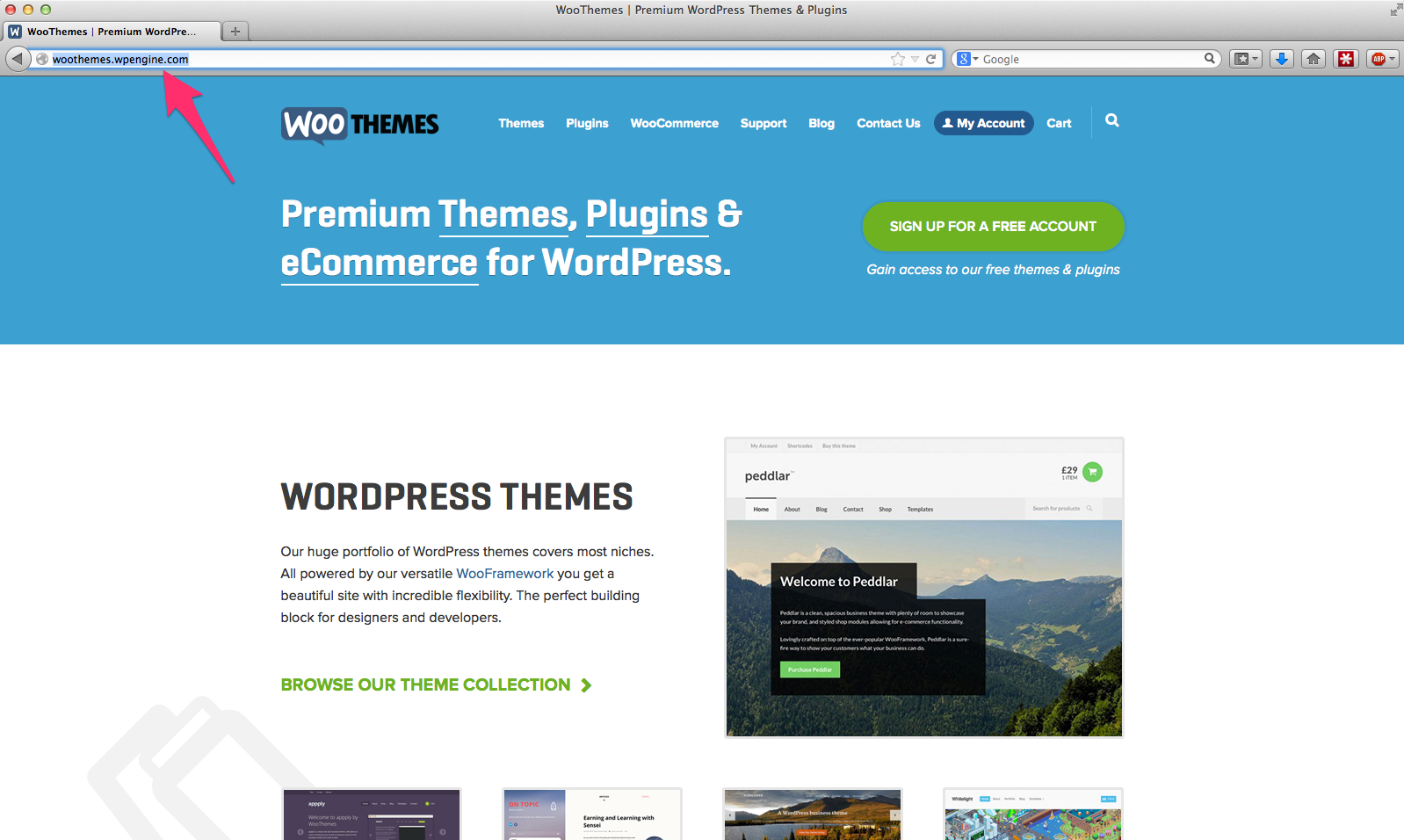 woothemes-wpengine-fail
